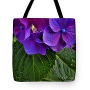 Spring 2013 Tote Bag