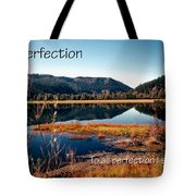 21042 Perfection 2 Tote Bag