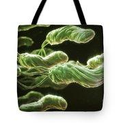 Helicobacter Pylori Tote Bag