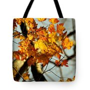 22nd Of September Tote Bag by JAMART Photography