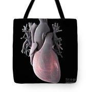 Heart Anatomy Tote Bag
