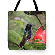 Scenes From Ecuador Tote Bag