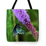 243 Butterfly Tote Bag