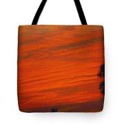 Sky Scape Tote Bag