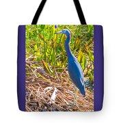 A Little Blue Tote Bag