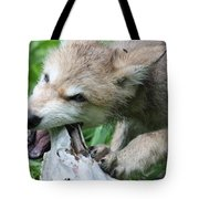 Gray Wolf Pup Tote Bag
