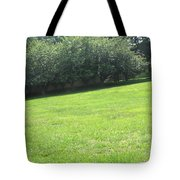 Camera Peak Thru Nature Buy Faa Print Products Or Down Load For Self Printing Navin Joshi Rights Man Tote Bag