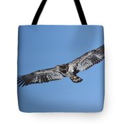 2nd Year Flight In The Sun Tote Bag