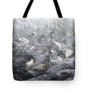 Flock Of Common Crane  Tote Bag