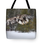 3 1/2 Year Eagle Landing Gear Down Tote Bag