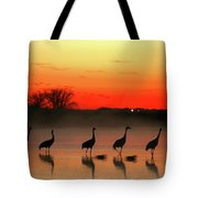 A General View Of The National Park Tote Bag