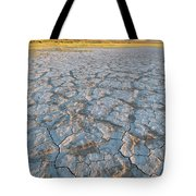Alvord Desert, Oregon Tote Bag