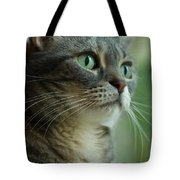 American Shorthair Cat Profile Tote Bag