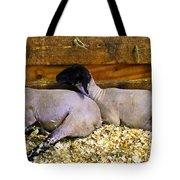 3 Animals Tote Bag