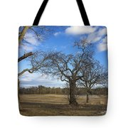 3 Appleton Trees Tote Bag