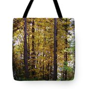 Autumn 5 Tote Bag