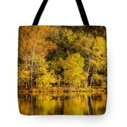 Autumn Color Tote Bag