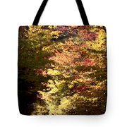 Autumn Colors And Road  Tote Bag