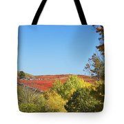 Autumn Colors In Maine Blueberry Field And Forest Tote Bag