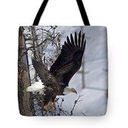 Bald Eagle   #8309 Tote Bag