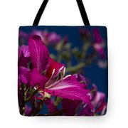 Bauhinia Purpurea - Hawaiian Orchid Tree Tote Bag