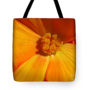 Begonia Named Nonstop Apricot Tote Bag