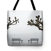 Benches And Trees Tote Bag