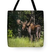 Big Fella Tote Bag