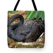 Black Swan At Nest Tote Bag