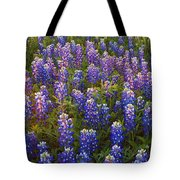 Bluebonnets At Sunset Tote Bag