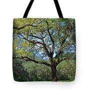 Bok Tower Gardens Oak Tree Tote Bag
