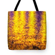 Bridge Of Lions Reflections St Augustine Florida Painted    Tote Bag