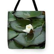 Budding Spirituality Tote Bag