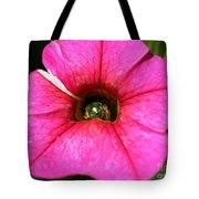 Calibrachoa Named Colorburst Rose Tote Bag