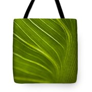 Calla Lily Stem Close Up Tote Bag