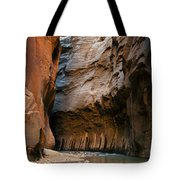 Canyon Trail Tote Bag