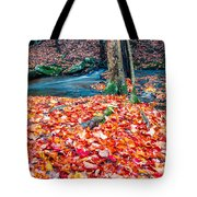 Chesterfield Gorge New Hampshire Tote Bag