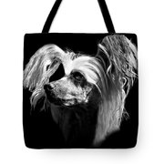 Chinese Crested Hairless Tote Bag