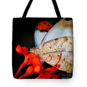 Colorful Portrait Of A Butterfly  Tote Bag