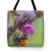 Common Carder Bee Tote Bag