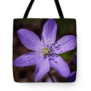 Common Hepatica Tote Bag