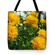 Coreopsis Named Early Sunrise Tote Bag