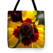 Coreopsis Or Golden Tickseed Tote Bag