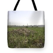 Cut And Dried Grass Along With Growing Grass Tote Bag