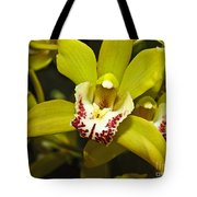 Cymbidium Orchid Tote Bag