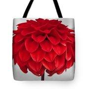 Dahlia Named Ali Oop Tote Bag