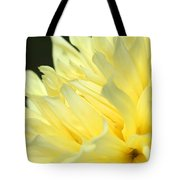 Dahlia Named Kelvin Floodlight Tote Bag