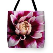 Dahlia Named Mystery Day Tote Bag
