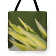 Dwarf Canna Lily Named Ermine Tote Bag