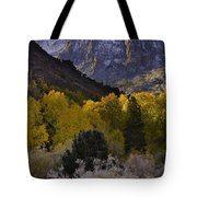 Eastern Sierras In Autumn Tote Bag